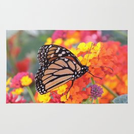 Monarch Feeding on Lantana Rug