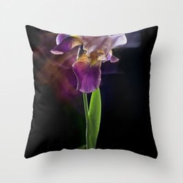 Iris flower on a black background. Long exposure. Throw Pillow
