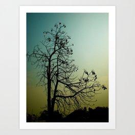 Spindly Tree Art Print