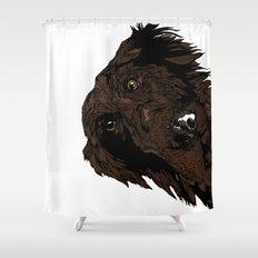 Flatcoated Shower Curtain