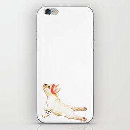 Upward Frenchie iPhone Skin
