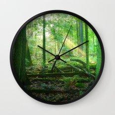 Devil's Lake State Park Wall Clock