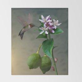 Lemon Tree and Hummingbird Throw Blanket