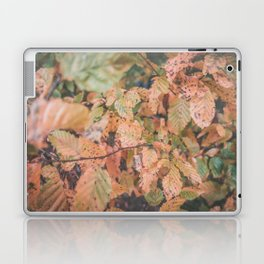 Autumn ground Laptop & iPad Skin