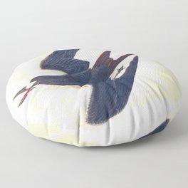 Sooty Tern John James Audubon Scientific Illustration Birds Of America Drawings Floor Pillow
