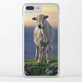 Shropshire Clear iPhone Case