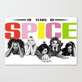 20 Years Of Spice: 1996 Canvas Print