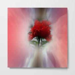 missing poppies -1- Metal Print