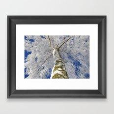 Snow worlds Framed Art Print