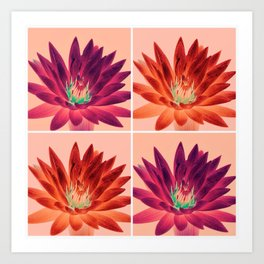 Flowers (pink and orange) Art Print