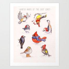 Winter Birds of the East Coast Art Print
