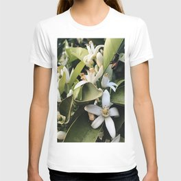 Jasmines with a Bee T-shirt