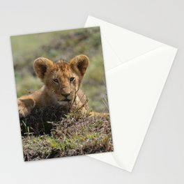 Adorable Lion Cub Stationery Cards