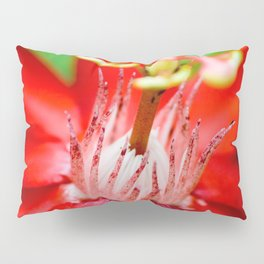Macro Photography : Red Flower (Passiflora) Pillow Sham