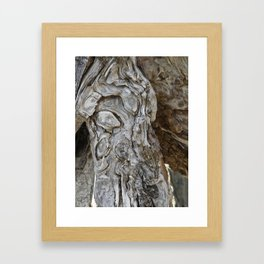 wood skin Framed Art Print