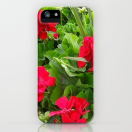 RED GERANIUMS GREEN GARDEN iPhone Case