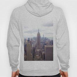 Bugs and Raindrops, Manhattan Skyline Hoody