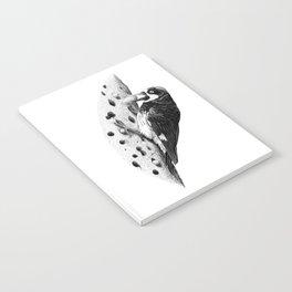 Acorn Woodpecker Notebook