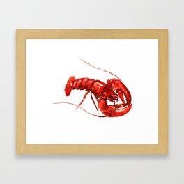 Red Lobster, restaurant kithcne design boston Framed Art Print