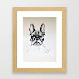 Portrait of a French Bulldog Framed Art Print