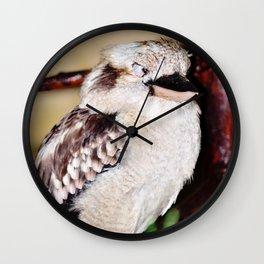 Sleeping Kookaburra Wall Clock