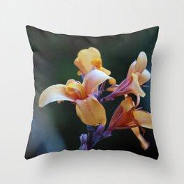 Longwood Gardens - Spring Series 128 Throw Pillow