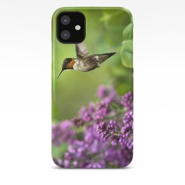 Hummingbirds Welcome iPhone Case