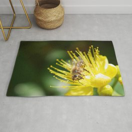 Bee Emerging Forest of Stamens on Yellow Flower Rug