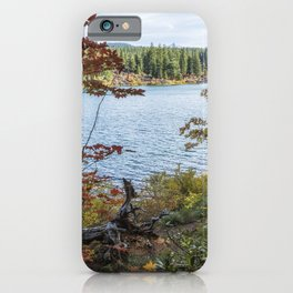 Splashes of Color Around Clear Lake iPhone Case