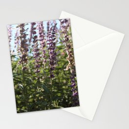 in my backyard..pt 2 Stationery Cards