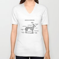 anatomy V-neck T-shirts featuring Greyhound Anatomy by gemma correll
