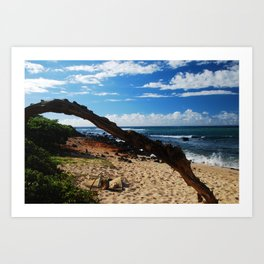 Beach on Maui Art Print