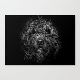 Ziggy Portrait No 1 Canvas Print