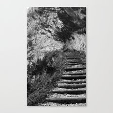 The middle path Canvas Print