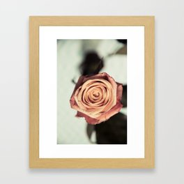Yellow Vintage Rose Framed Art Print