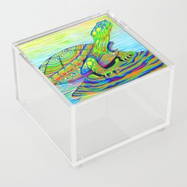 Colorful Psychedelic Neon Painted Turtle Rainbow Turtle Acrylic Box