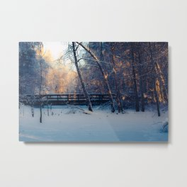 Midday sun streams through the trees at the footbridge at Creamers Field Metal Print