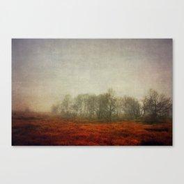 Stillness 2013 Canvas Print