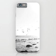 black and white big sur iPhone 6s Slim Case