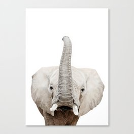 Elephant Art Canvas Print