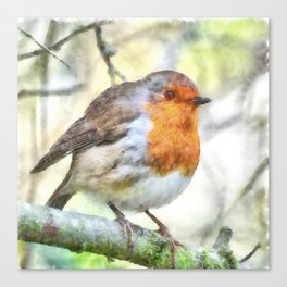 Christmas Robin Redbreast Winter Watercolor Canvas Print