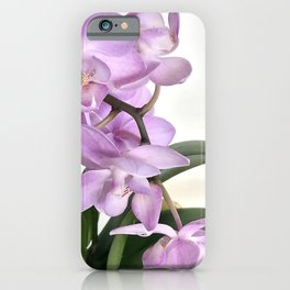 Pink orchid in bloom with green foliage  iPhone Case
