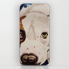Pit Bull Portrait iPhone & iPod Skin
