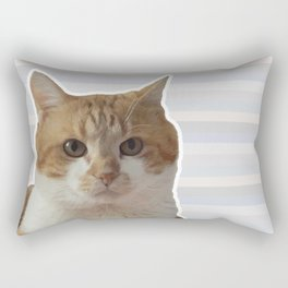 Red cat on a striped background. Rectangular Pillow