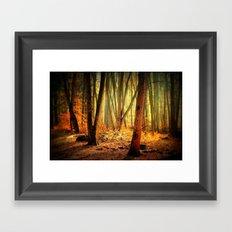 Morgenstimmung Framed Art Print