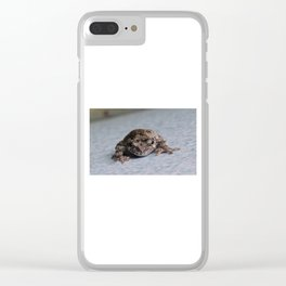 Grey Tree Frog Clear iPhone Case