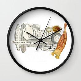 Sealife 1 Wall Clock