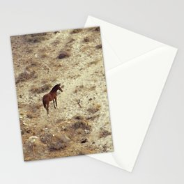 Horse in Santorini Stationery Cards