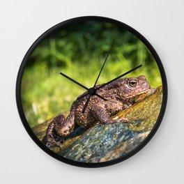 Amphibian, Common British Toad / Frog Wall Clock