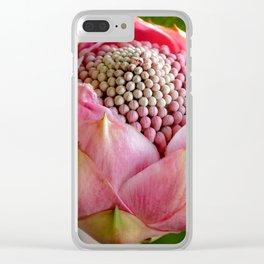 Pink bud Waratah Clear iPhone Case
